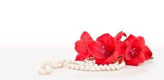 Ramificación de flores y del collar Imagenes de archivo