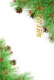 Ramificación de la Navidad Imagenes de archivo