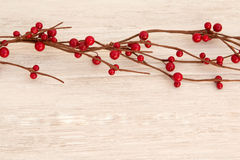 Ramificación de la Navidad con las bayas rojas Imagen de archivo libre de regalías