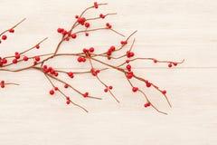 Ramificación de la Navidad con las bayas rojas Foto de archivo