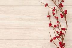 Ramificación de la Navidad con las bayas rojas Fotos de archivo libres de regalías