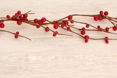 Ramificación de la Navidad con las bayas rojas Foto de archivo libre de regalías
