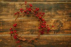 Ramificación de la Navidad con las bayas rojas Fotos de archivo