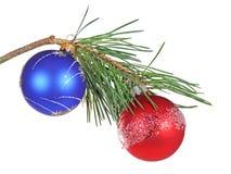 Ramificación de la Navidad de un pino fotos de archivo