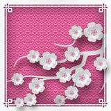 Ramificación de los flores de cereza Imagen de archivo
