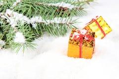 Ramificación del árbol de navidad con el regalo del rectángulo de oro Imagenes de archivo