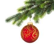 Ramificación del árbol de navidad con la bola de la Navidad Foto de archivo libre de regalías