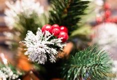 Ramificación del árbol de navidad con las bayas rojas foto de archivo
