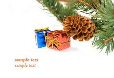 Ramificación del árbol de navidad y de regalos imagenes de archivo