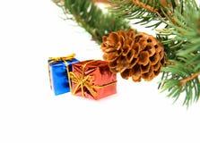 Ramificación del árbol de navidad y de regalos fotografía de archivo libre de regalías