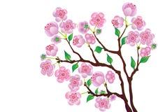 Ramificación del flor. stock de ilustración
