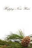 Ramificación y cono del cedro de la Navidad Fotos de archivo libres de regalías