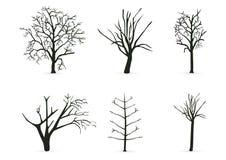 Ramificaciones de árbol de la silueta Imagen de archivo libre de regalías