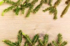 Ramificaciones de un árbol de navidad Imágenes de archivo libres de regalías