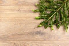 Ramificaciones de un árbol de navidad Fotos de archivo libres de regalías