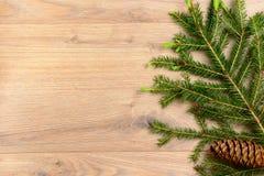 Ramificaciones de un árbol de navidad Imagen de archivo libre de regalías