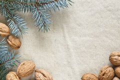 Ramificaciones del árbol de navidad y de las tuercas foto de archivo libre de regalías
