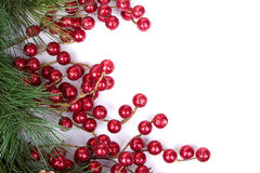 Ramificaciones del pino con las bayas de la Navidad Fotos de archivo