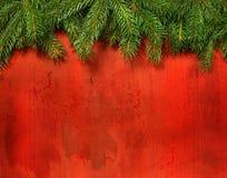 Ramificaciones del pino contra la madera roja rústica fotografía de archivo