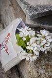 Ramificaciones florecientes Fotografía de archivo libre de regalías