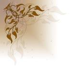 Ramificaciones y hojas Imagen de archivo libre de regalías