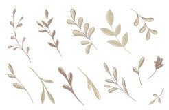 Ramifican y las hojas fijadas Imagenes de archivo