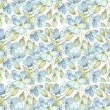 Ramifique com flores delicadas Teste padrão sem emenda 3 da aquarela Fotografia de Stock Royalty Free