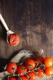 Ramifique com os tomates de cereja frescos Tomates vermelhos maduros Tomates A Fotos de Stock