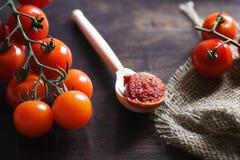 Ramifique com os tomates de cereja frescos Tomates vermelhos maduros Tomates A Fotografia de Stock