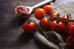 Ramifique com os tomates de cereja frescos Tomates vermelhos maduros Tomates A Fotos de Stock Royalty Free