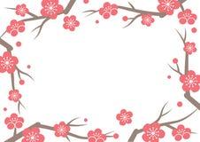 Ramifique con el marco floreciente de la flor de la primavera Imágenes de archivo libres de regalías