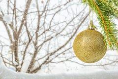 Ramifique con la bola de la Navidad en un fondo del invierno Foto de archivo