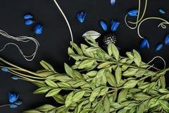 Ramifique con las hojas verdes y las flores azules Fotografía de archivo