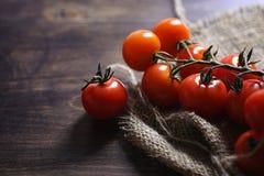 Ramifique con los tomates de cereza frescos Tomates rojos maduros Tomates A Imagen de archivo