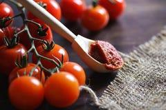 Ramifique con los tomates de cereza frescos Tomates rojos maduros Tomates A Fotos de archivo libres de regalías