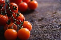 Ramifique con los tomates de cereza frescos Tomates rojos maduros Tomates A Imagen de archivo libre de regalías