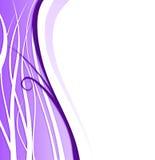 Ramifique para la violeta del fondo Fotos de archivo libres de regalías
