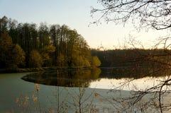 Ramifique sobre el lago con la lenteja de agua en la puesta del sol Fotos de archivo