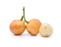 Ramiflora de Mafai ou de Baccaurea Foto de Stock