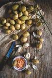 Ramifloras de Baccaurea foto de stock