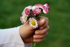 Ramillete de flores fotografía de archivo
