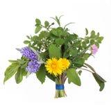 Ramillete de la hoja de la hierba y de la flor foto de archivo libre de regalías
