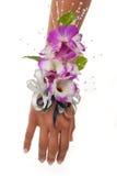 Ramillete de la orquídea fotos de archivo
