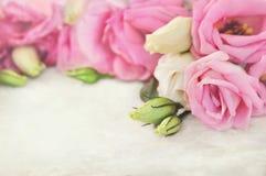 Ramillete delicado del eustoma, tarjeta floral festiva floreciente rosada del fondo del ramo de las flores, en colores pastel y s fotografía de archivo