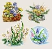 Ramilletes de flores stock de ilustración