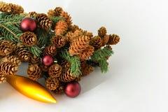 Ramita del pino con los conos abundantes con las decoraciones de la Navidad Imagen de archivo