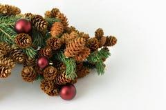 Ramita del pino con los conos con las decoraciones rojas de la Navidad de las bolas Fotos de archivo