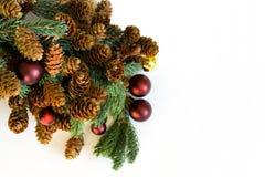 Ramita del pino con los conos y las bolas rojas en el lado izquierdo de la imagen Imagen de archivo libre de regalías