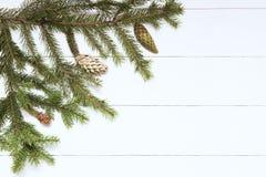 Ramita Spruce con los conos en el fondo de madera blanco Año Nuevo, la Navidad Imagen entonada, efecto de la película Foto de archivo