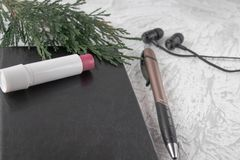 Ramita verde en un cuaderno negro al lado de una pluma, de una barra de labios y de auriculares en un fondo blanco imagen de archivo libre de regalías